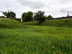 GOC Berkhamsted & Frithsden 146: Berkhamsted Castle (Peter O'Connor aka anemoneprojectors) Tags: 2016 archaeology berkhamsted berkhamstedcastle castle dacorum earthwork england gayoutdoorclub goc gocberkhamstedfrithsden gochertfordshire hertfordshire hertfordshiregoc kodak kodakeasysharez981 moat motteandbailey motteandbaileycastle outdoor scheduledancientmonument scheduledmonument z981
