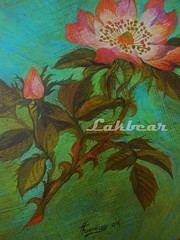 Painted wild rose in gilded frame (LAKBEAR(D)) Tags: bear door wood blue red white black green art home stone trash vintage beard keys mirror artwork stencil chair colorful ceramics paint acrylic symbol box recycled handmade lace mosaic metallic painted board indigo style polish tools used shelf canvas plastic fabric drawer attic rug antiques wardrobe tradition squish magnet footprint carbootsale stripy steampunk patterned decoupage thonet enamel reused paintedfurniture madebyhand gildedframe upcycled stilllifepainting restyled myowndesign pentart waxpaste stepbystepphotos lakbear