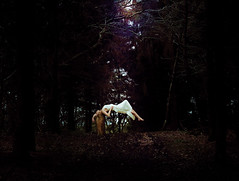 lifting (Sophie Barlow) Tags: light white fairytale forest photoshop hair photography woods dress fineart floating manipulation beam mystical layers fineartphotography conceptualart alevelphotography conceptualismfineart