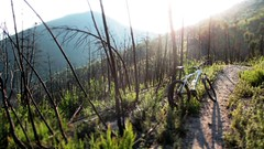 wasteland (Eolo2Ruote) Tags: bike cycling ride w pisa dirt mtb xc toscana bicicletta mondraker montipisani dueruote