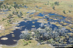 Flying Over The Okavango Delta, Botswana