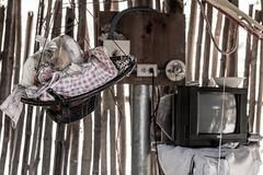 Interiores (Javier Suay Anton) Tags: television pared casa interior elsalvador interiores ong ngo pobreza vivienda despensa decoracion cooperacion chabola morazan chamizo cacaopera onl