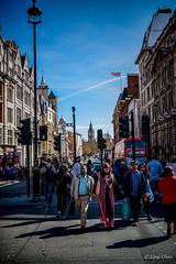 SAM_8280-2 (LingLingChan88) Tags: road trafficlights london photography photographer streetphotography bigben hunt blueskys londonlife londoner shaunthesheep crossingtheroad sheephunt