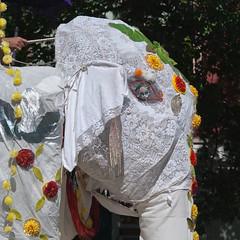 20130622-475.jpg (eldan) Tags: seattle usa washington fremont solsticeparade