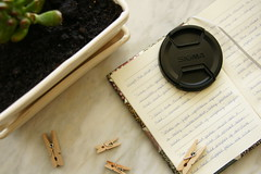 14/365 (shixlh) Tags: plant window paper notebook wooden sill notes clips sigma soil cover quotes flowerpot 365 marble