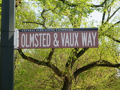 Central Park Scenic Landmark Olmsted & Vaux Way street sign in the Bethesda Terrace and Fountain area of Central Park, New York City, Manhattan Island, USA (RYANISLAND) Tags: nyc newyorkcity pink flowers ny newyork flower japan japanese spring centralpark manhattan cherryblossom  sakura cherryblossoms newyorkstate matsuri japaneseculture nys springtime jpop sakuramatsuri  cherryblossomfestival centralparknyc manhattanisland japanday welcomespring japandaycentralpark peakbloom japandaynyc japanday2016