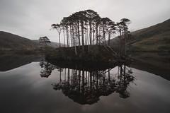 Eilean na Mòine (SkylerBrown) Tags: travel trees lake reflection nature water beautiful landscape island scotland pretty harrypotter calm lochelit eileannamòine