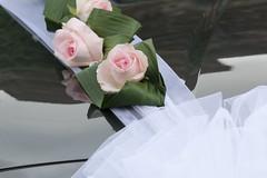 Wedding time... (carlo612001) Tags: wedding car rose