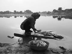 Gujarat 2015 (hunbille) Tags: india gujarat kutch katch kaachchh kaatch rabari village bharwat vadgam vadgamvillage cy2