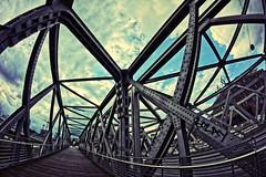 DSC00137 (densenato) Tags: brcke bridge hafencity hamburg germany deutschland sony alpha5000 walimex 8mm club16 fisheye samyang steel stahl uww