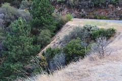 Road 140 CA, Yosemite (lotos_leo) Tags: california road travel mountains nature landscape outdoor yosemite mountainside sierranationalforest   road140  centralyosemitehighway crossamerica2015
