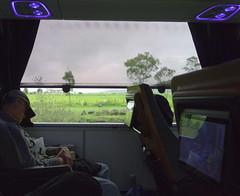 Bus Ride (Maria Sciandra) Tags: reflection bus green window grass landscape mexico flora shadows country sanmigueldeallende commuter elcampo sonyrx100 mariasciandraphotography mariasciandracom