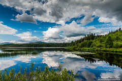 GallowayF_DSC5923 (Nick Woods Photography) Tags: trees cloud lake water clouds cloudy greenery loch rainclouds freshwater dumfriesgalloway lakescene waterreflections calmwater gallowayforest