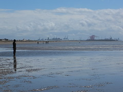 DSCF0680 (SierPinskiA) Tags: sea shells beach liverpool sand ironman pools barnacles ironwork mayday seashore merseyside anthonygormley irishsea 2016 anotherplace crosbybeach blundellsands fujixs1