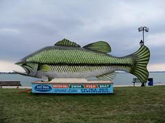 OH Celina - Big Fish (scottamus) Tags: celina ohio mercercounty roadside attraction odd strange unusual weird big giant fish statue sculpture fiberglass