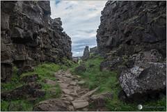 Þingvellir (jboisard.photo) Tags: islande iceland thingvellir þingvellir faille landscape paysage voyage nature nikon d500 nikoniste tokina1224mmf4atxprodx jérômeboisard jboisardphoto wwwjboisardphotojimdocom wwwfacebookcomjboisardphoto