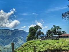 . @Regrann from @olivera_consta - Santa Isabel, Tolima, Colombia. Espectacular vista desde esta casa. #enmicolombia #loves_americas #loves_colombia #tolima #sky #clouds #farm #nature #mimotofotocol #colombiahd #colombianiando #icu_nature_perfect_day #icu_ (EnMiColombia.com) Tags: foto regrann from oliveraconsta santa isabel tolima colombia espectacular vista desde esta casa lovesamericas lovescolombia sky clouds farm nature mimotofotocol colombiahd colombianiando icunatureperfectday icucolombia colombiastreetphoto mitolimaoficial micolombiaoficial colombiafolklore colombiaestrella tree landscapephotography travelingram colombiagrafia igerscolombia igglobalclub igworldclub colombiainsider galeriaco