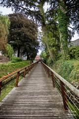 Diest 300716 17 (David Vanthienen) Tags: walk natu hike walking city stad diest hiking wandelen wandeling dieststadcitywandelingwandelenhikinghikewalkingwalknatuurnaturecitadelhalvemaandemerecocenterwarandebegijnhofbeguinage