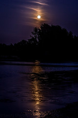 Sturgeon Moon reflection (Sandy Sharples) Tags: fullmoon sturgeon moon luna reflection water sale manchester england summer silhouette nature nightsky nightscape