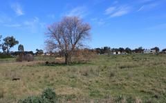 Lot 1039 Trungly Hall Road, Temora NSW