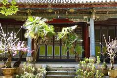 512 Thonghai (farfalleetrincee) Tags: china travel tourism nature temple asia buddhism adventure guide yunnan 云南 tonghai 通海县 xiushanmountain
