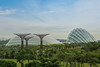 Gardens by the Bay (Alexis Chouan) Tags: tree nature architecture modern marina garden singapore natural rich biosphere future straight sands biodome gardensbythebay