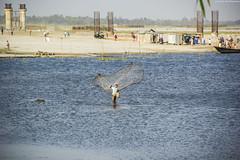 (royudoys) Tags: canon river eos lifestyle bangladesh teesta rangpur 18135mm 60d mohipur