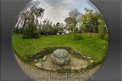 Glendurgan Garden (Muzammil (Moz)) Tags: uk cornwall fisheye glendurgangarden muzammilhussain canon815mm canon5dmark3 mozhapsyahoocouk