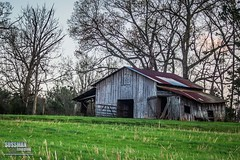 Old Barn (The Suss-Man (Mike)) Tags: trees grass barn rural georgia landscape dahlonega lumpkincounty thesussman sonyalphadslra550 sussmanimaging