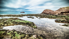 Bass rock, North Berwick, Scotland, United Kingdom - Landscape photography