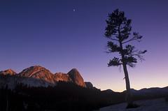 Alpenglow, Tuolumne Meadows, Yosemite National Park, California (arbabi) Tags: california sunset usa moon tree nature silhouette pine america landscape granite yosemitenationalpark sierranevada alpenglow highsierra tuolumnemeadows waxingcrescentmoon fairviewdome potholedome