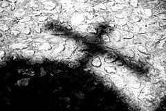 in Kreuzes Namen (StellaMarisHH) Tags: canon deutschland europa kirche kreuz sw 28 tamron kontrast schatten lightroom niedersachsen 2470 wendischevern tamron2470 offenblende photoscape 5dmkii canoneos5dmkii eos5dmkii