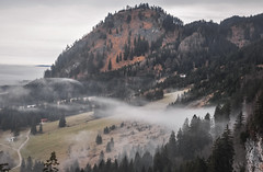 View from Neuschwanstein (ccr_358) Tags: winter panorama tourism fog clouds germany landscape bayern deutschland bavaria grey scenery day view cloudy postcard january neuschwanstein inverno germania cartolina gennaio baviera 2016 swabia christmasholidays ostallgu ccr358