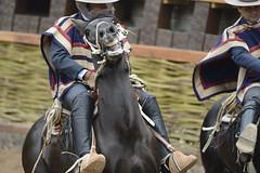 Final Champions 2016 Rancagua (Chile) (Photopinto) Tags: chile horses nikon media chili luna final cavalos tradition champions chevaux rancagua d4 corridas 2016 huasos cavallos rodo 200400f4