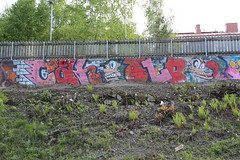 summer in Pispala (Thomas_Chrome) Tags: street streetart art suomi finland graffiti europe gallery fame can spray nordic walls tampere hof pispala