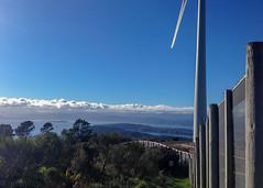 View from the top (hmxhm) Tags: newzealand nature wellington aotearoa zealandia