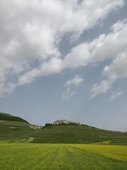 Castelluccio (Fraser P) Tags: flowers italy mountains primavera landscape spring umbria castelluccio pianogrande fiorita