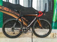 Pinarello Build (Chris Olbekson) Tags: prince dogma italianracingbikes carbonracingbike 2015pinarellodogmaprince
