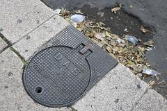 Practica 5 // FOTO-PART (gabriellacorella) Tags: hojas paseo basura reforma coladera cdmx