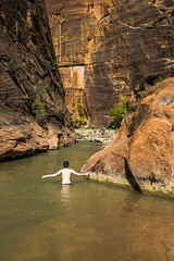 Walk In Water At Zion National Park (danielmedley) Tags: park outdoors nikon outdoor canyon hike national zion narrows d5200