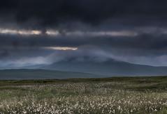 """ SUMMER TIME "" (Wiffsmiff23) Tags: breconbeaconsnationalpark brecon fannedd goats beard dramatic drama epic hike trek rugged southwales"