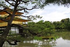 IMG_1542 (swanze2019) Tags: japan kyoto kinkakuji goldentemple