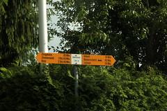 Wegweiser Oberscherli ( BE - 734m - Standorttafel Berner Wanderwege ) bei Oberscherli im Kanton Bern der Schweiz (chrchr_75) Tags: hurni christoph schweiz suisse switzerland svizzera suissa swiss chrchr chrchr75 chrigu chriguhurni chriguhurnibluemailch juli 2016 juli2016 kanton bern kantonbern standorttafel standort tafel markierung wegweiser berner wanderwege wanderweg site map plan du mappa del sito sidkarta sivustokartta wanderwegweiser bernerwanderwege wanderwegmarkierung trail hiking hikingtrail albumstandorttafelsammlung