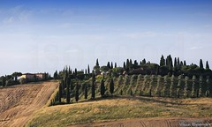 20160704_crete_senesi_siena_tuscany_88p77 (isogood) Tags: italy landscapes horizon country scenic tuscany crete siena cretesenesi asciano senesi