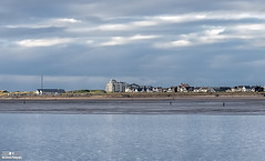 Crosby Beach - 7th July 2016 (Bob Edwards Photography - Picture Liverpool) Tags: beach liverpool crosby