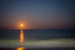 Carolina Beach Moon Rise (jonathandyer) Tags: carolina beach park north wilmington moon rise moonrise