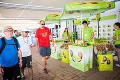 CR_160802TMoya_3251.jpg (Infosailing) Tags: zespri crewvillage 35copadelreymapfre eventos staff club rcnp fotografo tomsmoya 2016 sponsors pantalan palmademallorca