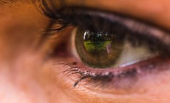 Sometimes the eyes can say more than the mouth. #eyes #soul #window #life #green #life (Rodrigo Violante) Tags: sometimes eyes can say more than mouth soul window life green