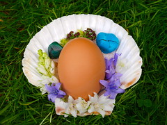 love (alev.adil) Tags: life flowers love stone garden peace turquoise egg joy salt shell happiness spell blessing health himalayan malachite