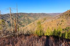 Tucannon River Canyon (Matthew Singer) Tags: mountains washington unitedstates hiking bluemountains dayton scenicviews wenahatucannonwilderness umatillanationalforest